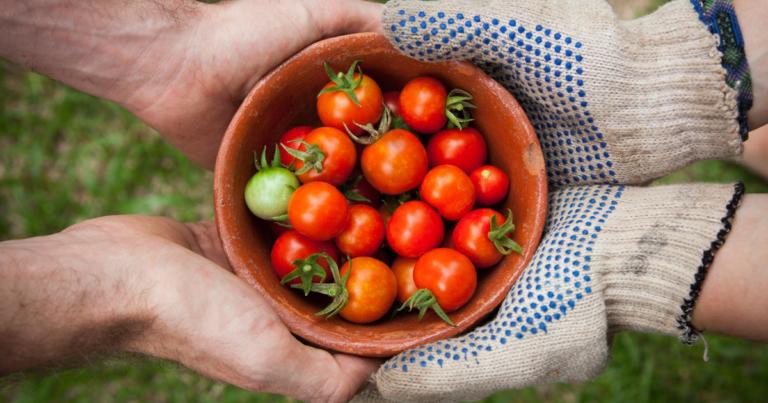 VG - Agricultura Biológica – Novo incentivo